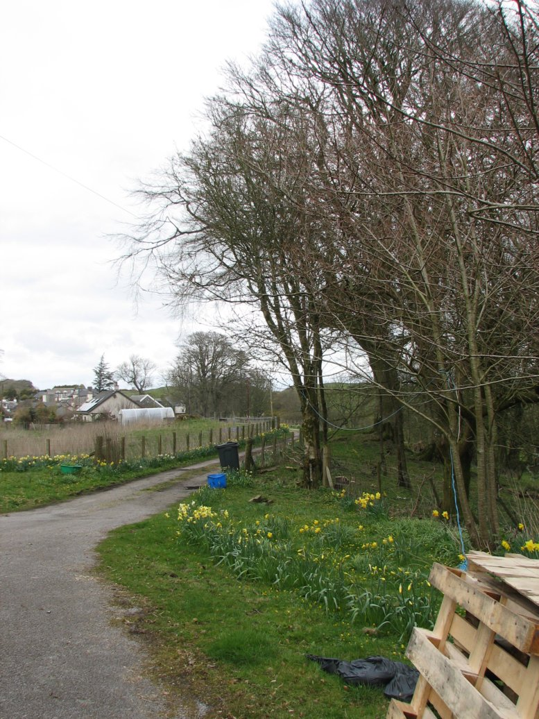 Looking down the driveway, towards the village