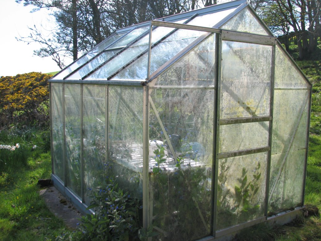 """The greenhouse was one of the big successes of April - this is very much a """"before"""" picture"""