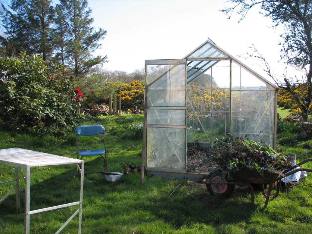 and now...after. Behold the space where once was alcanet and and very seedy tall nettles from last year! Phase two was washing all the panes of glass - that got completed but the camera wasn't out to take photies