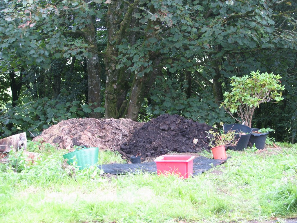 And you'll now spot the mound of former-gro-bag-contents. This pile actually got too big so there ended up being a second pile - fun and games!