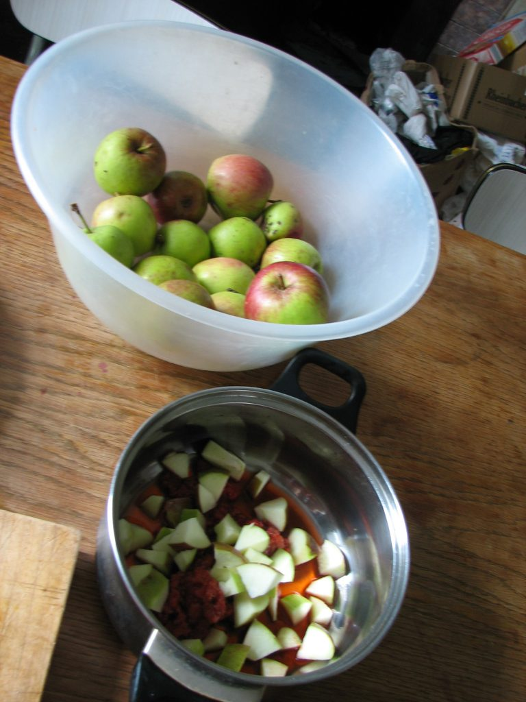 Excitingly, September was the month we started harvesting some rather yummy apples from one of the three apple trees that were already here. The berries in the pan are Japanese wineberries (which may well feature in the future if we manage to get some of the cuttings we've got to take)