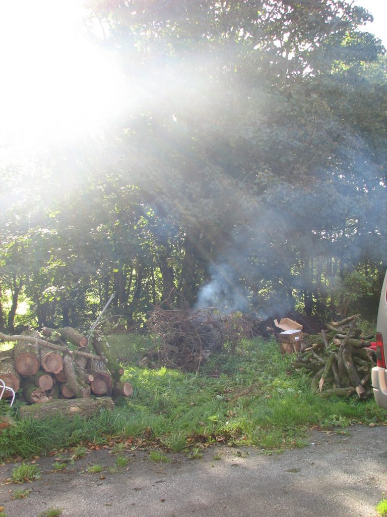 And, of course, the bonfire shot. Smoke and gorgeous sunshine make it a rather interesting view, but rest assured the bonfire made short work of the brambles and the other bits and pieces that had been lying around for ages and which now...aren't!