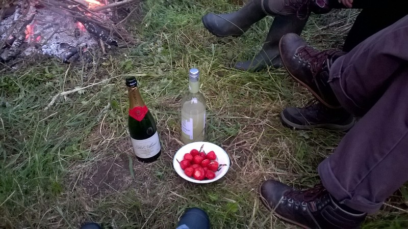 Birthday strawberries & champagne (the Belvoir ginger bubbles were my tipple)