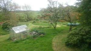 Mowing in progress - view from our bedroom window